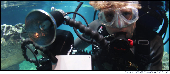 Jonas Stenstrom Underwater filmmking with Untamed Science