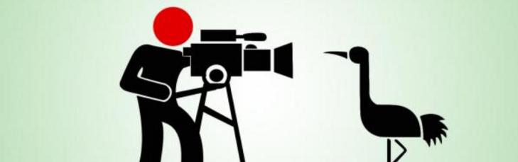 science filmmaking untamed science