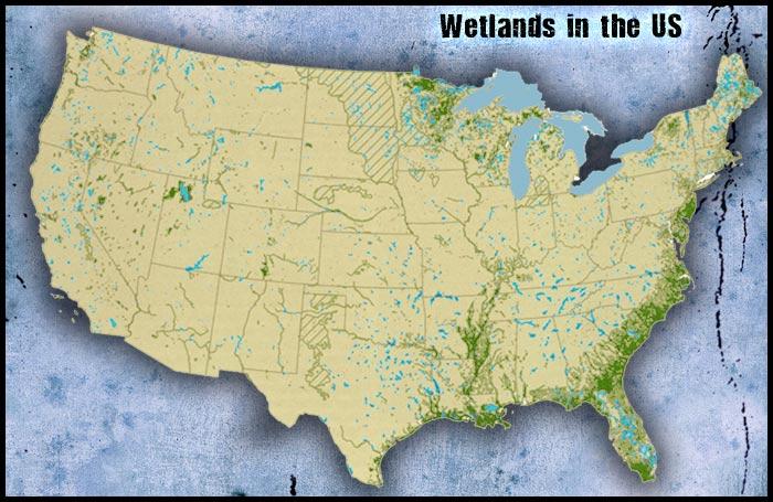 Wetlands-Map