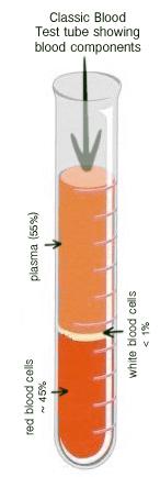 blood-testtube