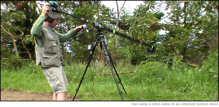 dan-cobra-crane