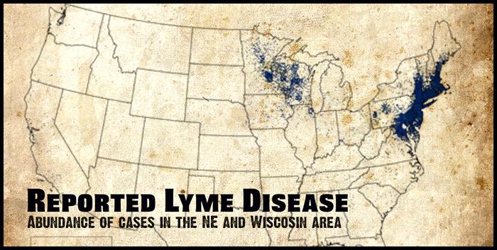 lyme-map