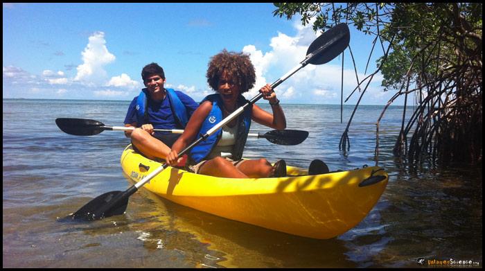mangrove-kayaking1