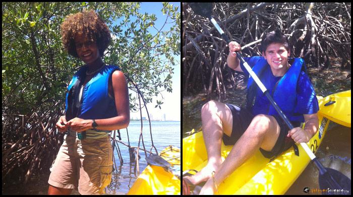 mangrove-kayaking3
