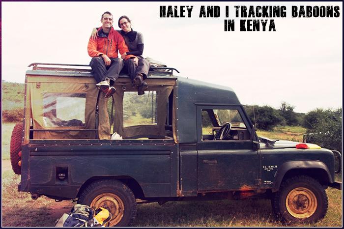 tracking-baboons-kenya