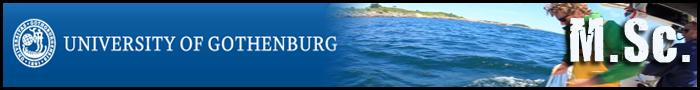 University_of_Gothenburg700x90