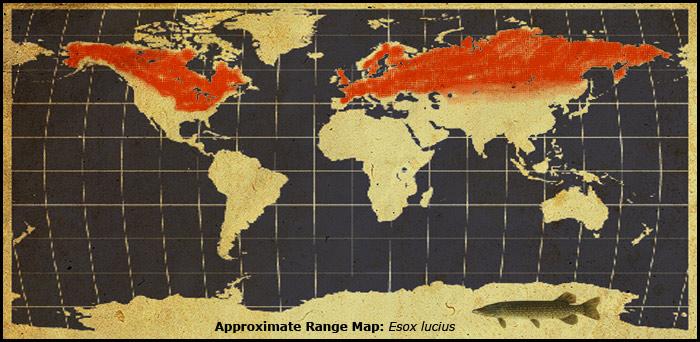 esox-lucius-range-map