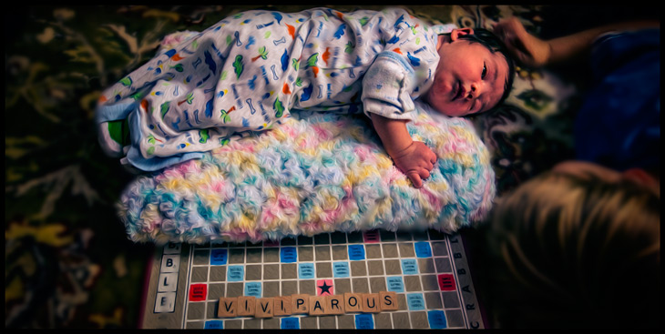 viviparous human baby on scrabble
