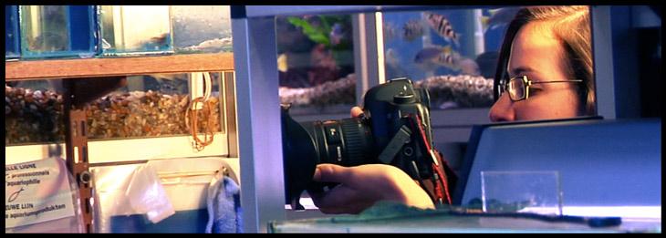 film-in-fish-store-2