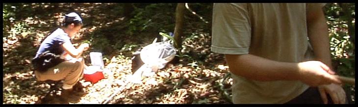 margarita lopez in rainforest