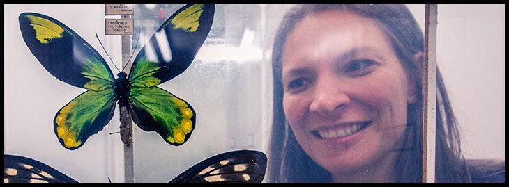 Michelle Trautwein - entomologist