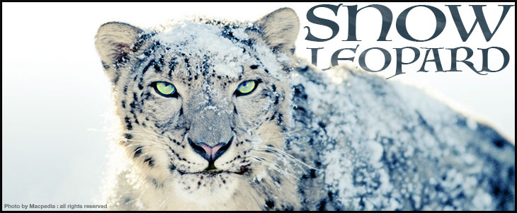 snow-leopard-macpedia