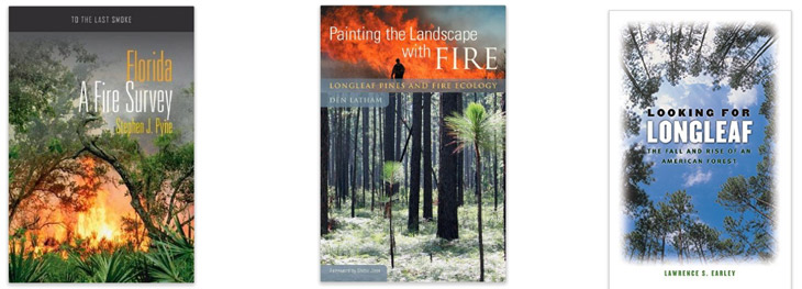books-on-fire-in-southern-forests