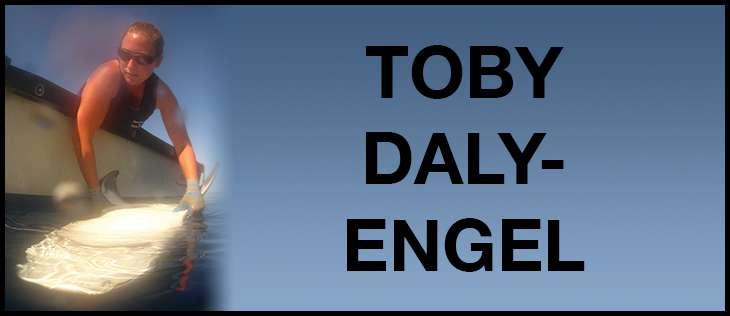 Toby daly engel 6