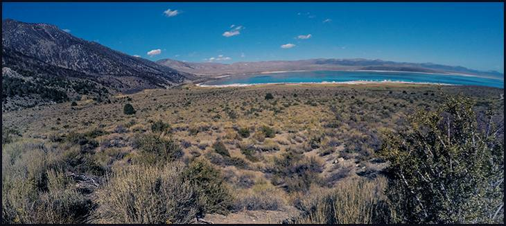 desert-scrub-mammoth-california-mono-lake