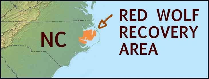redo-wolf-recovery-area-range